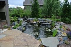 Waterfalls & Ponds